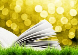book-pages-flapping-open-in-wind