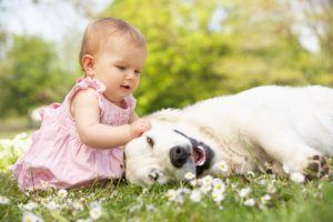 baby-girl-playing-with-a-dog-in-a-field