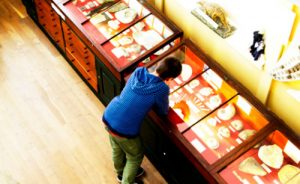 young-boy-history-museum-case