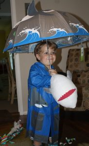 young-boy-wearing-shark-raincoat-and-holding-shark-umbrella
